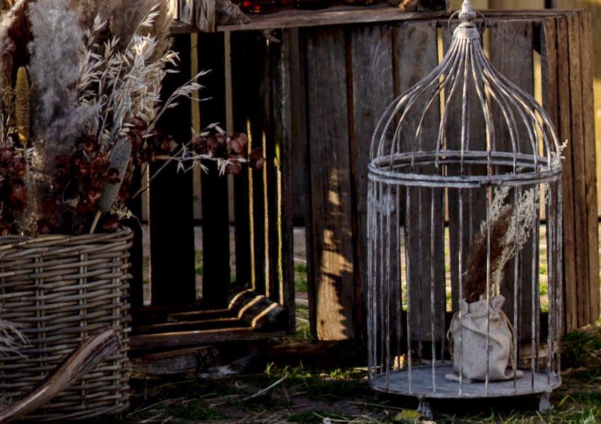 Deko Vogelkäfige