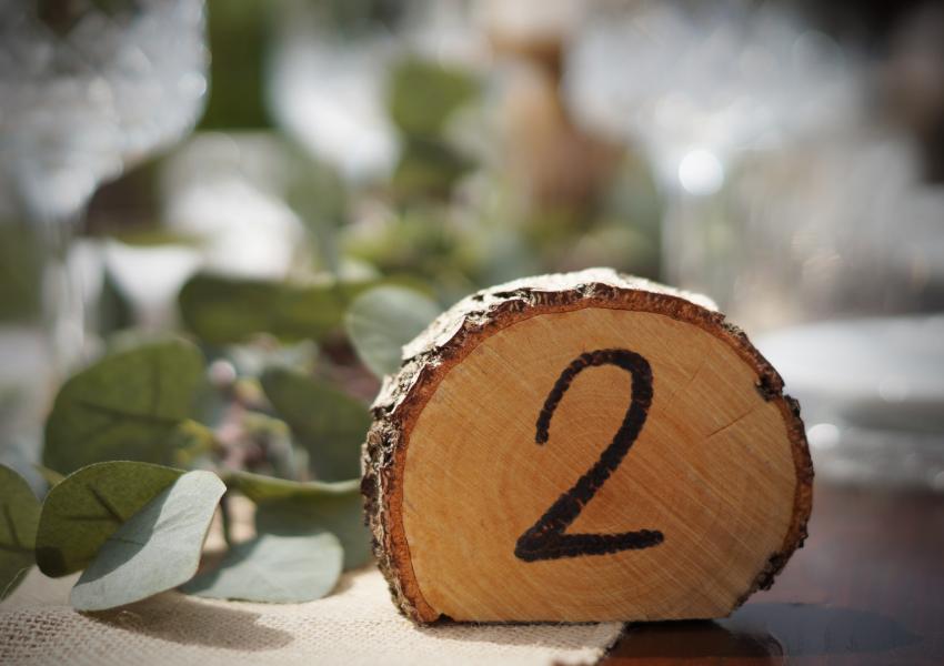 Tischnummern Birke Natur
